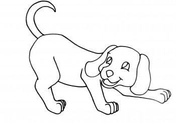 imagen de animal para colorear