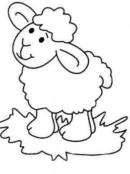 ovejas para colorear