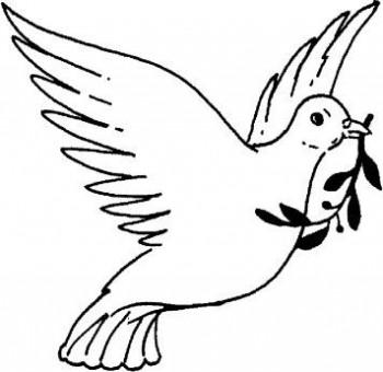 palomas para colorear
