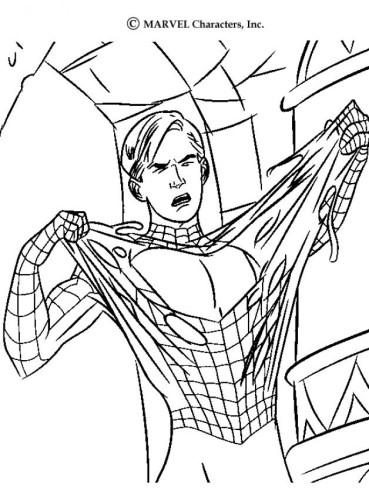 Colorear el hombre araña en casa