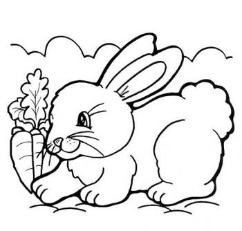 colorear conejo