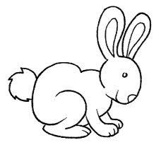 colorear conejos