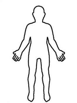 colorear el cuerpo humano