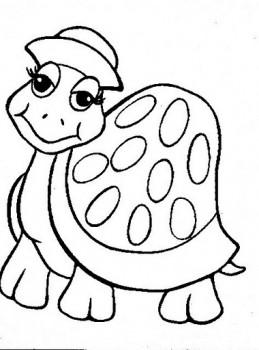 dibujo de tortuga para colorear