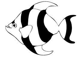 imagen de pez para colorear