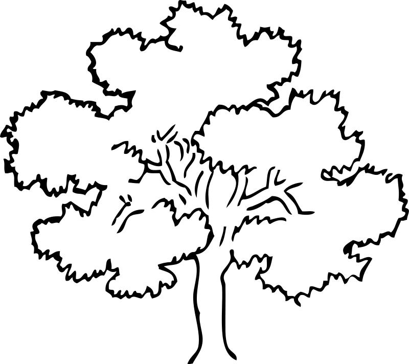 Imágenes de árboles para colorear