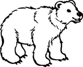 osos para colorear
